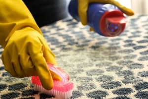 Best Dry Carpet Cleaning Powder