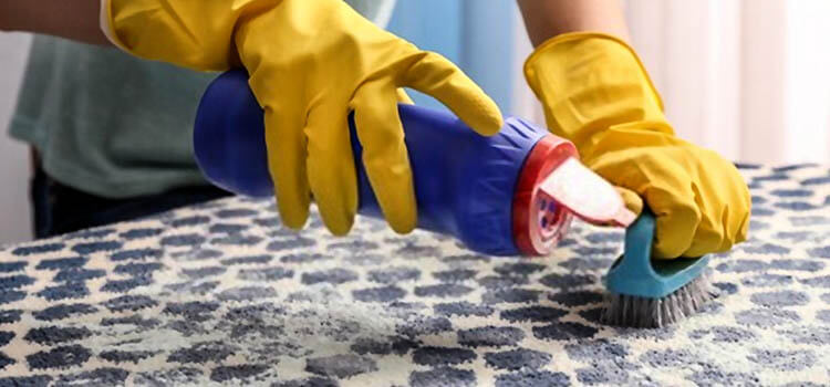 Best Dry Carpet Cleaning Powders Buying Guide