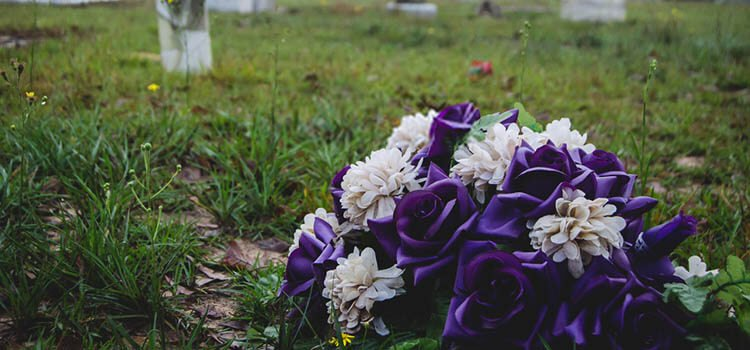 purple flowers on grave