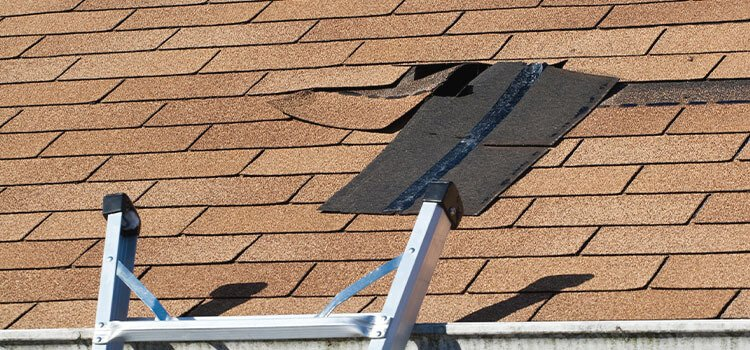 Best Roof Sealant for Shingles